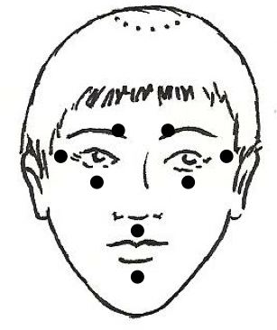 Face Points