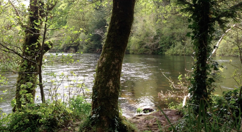 Isthmus in Cong, Ireland, where two streams meet and flow together